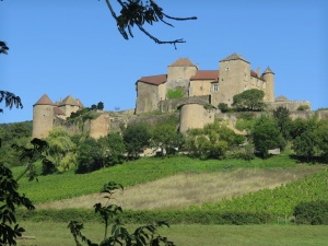 Castle between Cluny and Macon